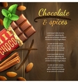 Chocolate And Spices Background vector image