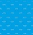 fruit salat pattern seamless blue vector image