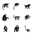 species of monkey icon set simple style vector image vector image