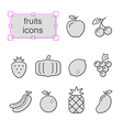 Thin line icons set Fruits vector image vector image