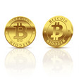 two gold coins bitcoin isolated on white vector image vector image