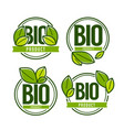 bio product doodle organic leaves emblems vector image vector image