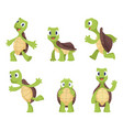 cartoon turtle in various action poses vector image vector image