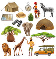 safari set icon set vector image vector image