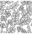 astragalus seamless pattern vector image