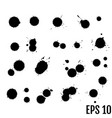 black ink paint spots drops texture isolated on vector image