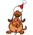 dog with christmas cane cartoon vector image vector image
