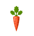 fresh juicy veg - carrot icon isolated on vector image