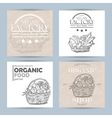 collection of four vegetable banners vector image vector image