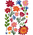 colorful wild and garden blooming flowers and vector image vector image