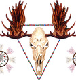 Moose Skull pattern vector image