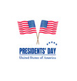 presidents day on usa flag vector image