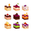 cake slices with flavour decor vector image vector image