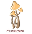 Cartoon forest mushrooms vector image