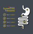 gastrointestinal infographic flat design vector image