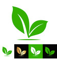 plant seed leaf logo stock vector image vector image