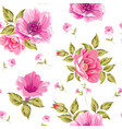seamless pattern of flower heads vector image vector image