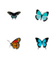 set of butterfly realistic symbols with sky animal vector image