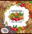 superfood poster with nut cereal seed and bean vector image vector image