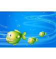 Three green piranhas under the sea vector image vector image