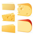 various types cheese vector image