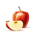 realistic red apple fruit slice 3d isolated vector image