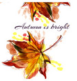autumn background with yellow red maple leaf vector image