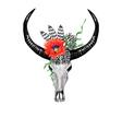 Bull Skull PoppyBW vector image vector image