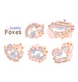 cute summer stickers of cartoon cats or foxes vector image