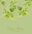 Green leaf on green backgroundlove nature concept vector image vector image