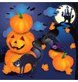 halloween background with pumpkins black cat and vector image vector image