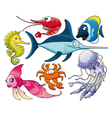 Marine life vector image vector image