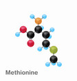 molecular omposition and structure of methionine vector image vector image