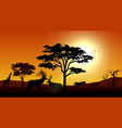 silhouette animals savannas in the afternoon vector image vector image