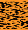 tiger stripes seamless pattern black and vector image vector image