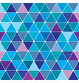 winter triangle pattern 25 vector image vector image