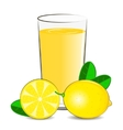 fresh lemon juice vector image vector image