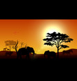 silhouette animals on savannas in the afternoon vector image