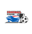 soccer football stadium and ball icon vector image vector image