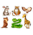 Sticker set of wild animals vector image vector image