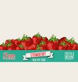 strawberry retro vintage background vector image