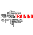word cloud training vector image vector image