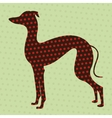 Dotted greyhound vector image