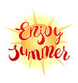 enjoy summer vector image
