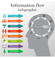 Information flow infographic vector image vector image