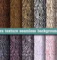 Animal print zebra texture seamless background vector image vector image