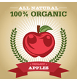 Organic Apples vector image vector image