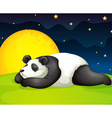panda resting in night vector image vector image