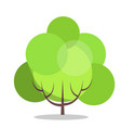small green tree isolated on white close up vector image vector image