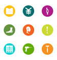 fix the bone icons set flat style vector image vector image
